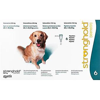 Stronghold Teal Dogs 20-40kg (44-88lbs) - 6 Pack