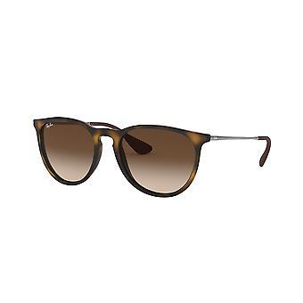 Ray-Ban Erika RB4171 865/13 Rubber Havana/Brown Gradient Sunglasses