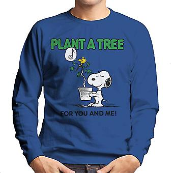 Peanuts Snoopy Plant A Tree Men's Sweatshirt