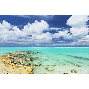 Tropical White Sand-ranta ja meri Turks and Caicos Islands-PosterPrint