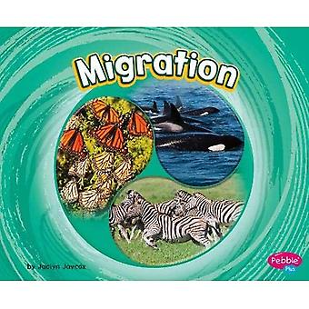 Migration (Cycles of Nature)