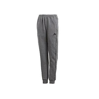 Adidas JR Core 18 CV3957 universal all year boy trousers