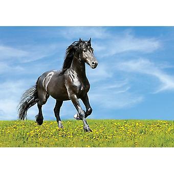 Tapete Mural Horse Herd Run in Desert Dust Storm (83954279)