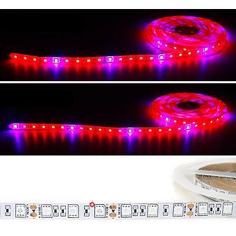 5m Led Grow Light, Strip Full Spectrum Uv Lamps