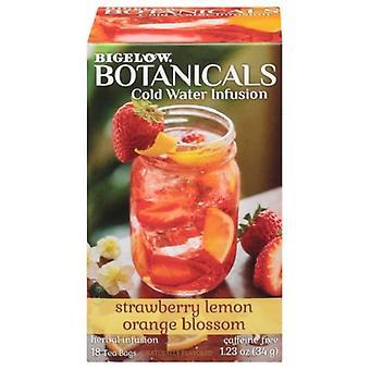 Bigelow Botanicals Cold Water Infusion Tea Strawberry Lemon Orange Blossom