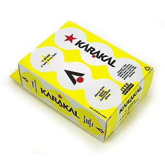 Karakal 1 Stern Tischtennis 40mm Poly Starter Bälle Pack von 6 - weiß