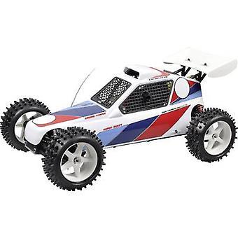 FG Modellsport Marder 1:6 RC modello auto benzina Buggy RtR RWD 2,4 GHz