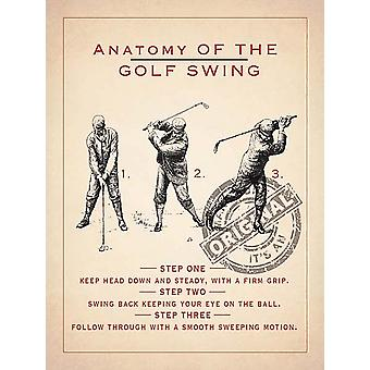 Anatomia de um Metal de Swing Golf assinar 400 X 300 Mm