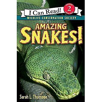 Serpenti incredibile! (Posso leggere libri: livello 2 (Harper brossura))