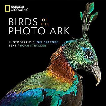 Fåglar av foto arken