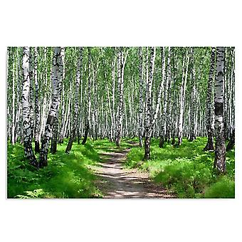 Canvas, Picture on canvas, Birch forest 2