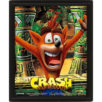 Crash Bandicoot Framed 3D Picture