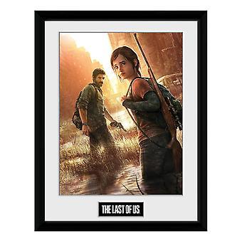 The Last of Us, Plate - Key Art