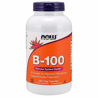עכשיו מזונות ויטמין B-100, 250 כמוסות