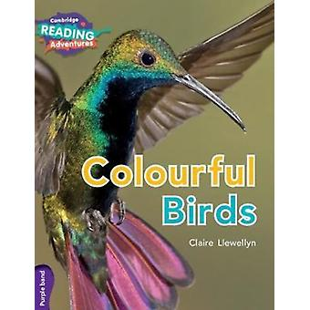 Colourful Birds Purple Band by Llewellyn & Claire