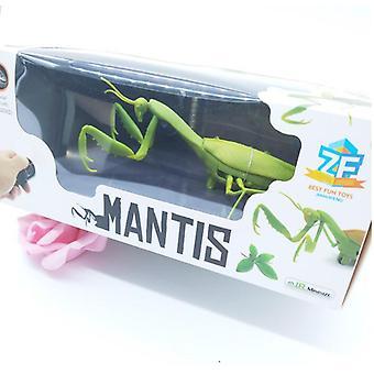Brinquedo de inseto animal infravermelho Rc