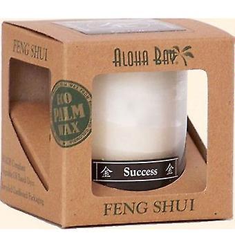 Aloha Bay Feng Shui Candle Jar, Metal Success 2.5 oz