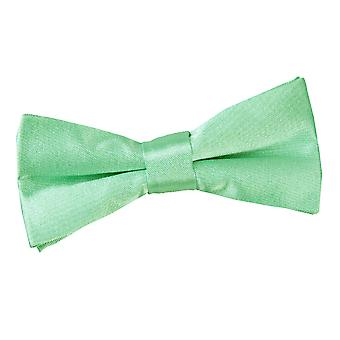 Mint groene vlakte satijn vooraf gebonden strikje voor jongens
