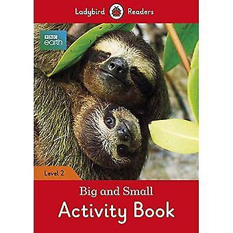Terre de BBC: Activité de petits et grands lecteurs de livre - coccinelle niveau 2