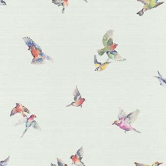 Faulsonntag Vogel Druck Wallpaper Pastell Blau Rasch 401141