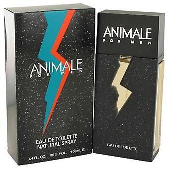 Animale Eau De Toilette Spray By Animale 3.4 oz Eau De Toilette Spray