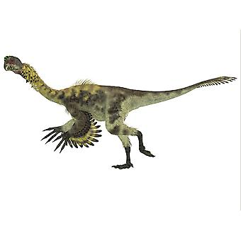 Citipati dinosaur Citipati was a omnivorous theropod dinosaur that lived in Mongolia during the Cretaceous Period Poster Print