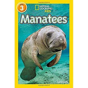 Manaatit: Taso 3 (National Geographic lukijat) (National Geographic lukijat)