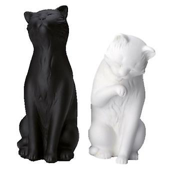 Kirjat tukevat kissoja, mustaa ja valkoista