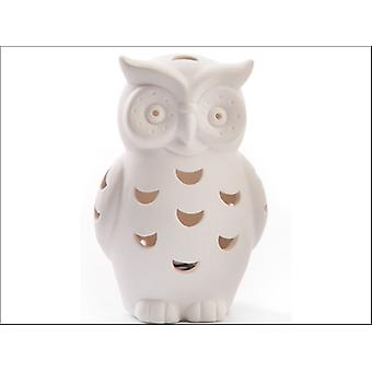DMD Welcome Home Owl LED Small PC55CB010
