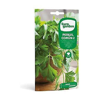 Smooth Leaf 2 Common Parsley Seeds 15 g