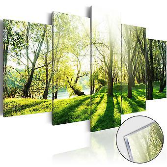 Quadri su vetro acrilico - Green Glade [Glass]