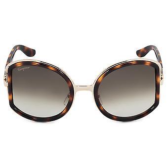 Salvatore Ferragamo Round Sunglasses SF719S 238 52