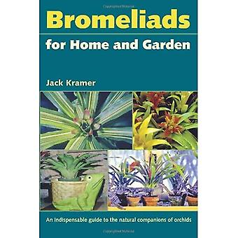 Ananasväxter för hem och trädgård