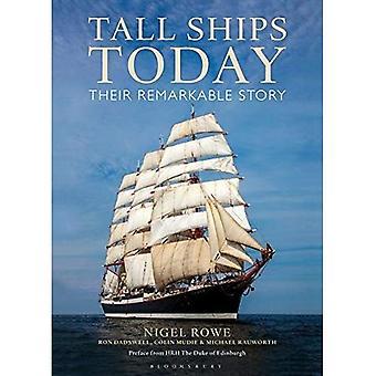 Tall Ships hoje: Sua história notável