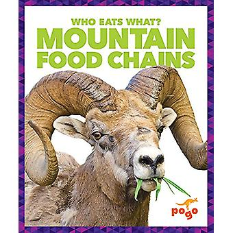 Mountain Food Chains by Rebecca Pettiford - 9781620315767 Book