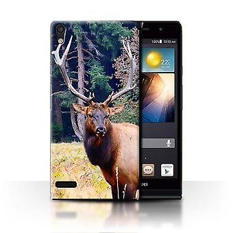 STUFF4 Case/Cover for Huawei Ascend P6/Elk/Bull/North America Animals