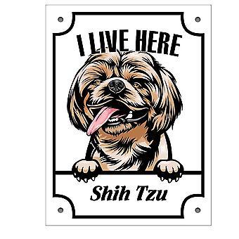 Plåtskylt Shih Tzu  Kikande hund skylt
