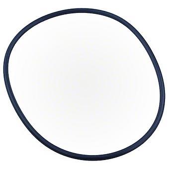 Pentair 351446 XF Series Pump Seal Plate O-Ring