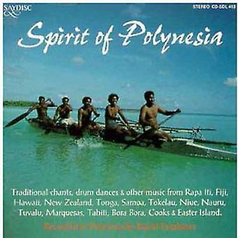 World Music-Spirit of the - World Music-Spirit of the [CD] USA import