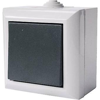 GAO 9160 Wet room switch product range Toggle switch Business-Line Grey