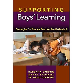 Supporting Boys' Learning: Strategies for Teacher Practice, Pre-K-Grade 3
