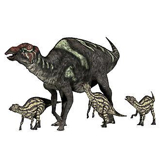 Maiasaura war eine Ente-billed pflanzenfressenden Dinosaurier, der lebte in Montana USA in der Kreidezeit Ära Poster Print