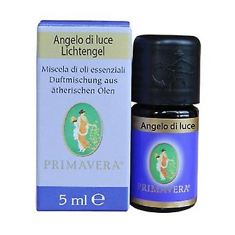 Angel Of Light Blends Essential Oils None