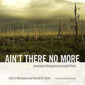 Aint There No More by Carl A. BrasseauxDonald W. Davis
