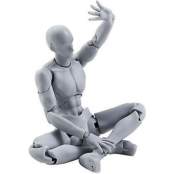 Human Body Action Figure Model