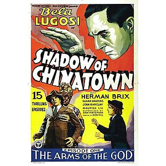 Shadow of Chinatown [DVD] USA import