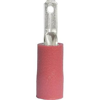 Vogt Verbindungstechnik 391308S largura conector da lâmina terminal: 2,8 mm conector espessura: 0.8 mm 180 ° parcialmente isolado vermelho 1 computador (es)