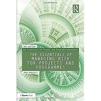 Die Grundlagen des Risikomanagements für Projekte und Programme