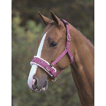 Shires Fleece Lined Lunge Cavesson - Raspberry
