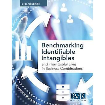 Benchmarking Identifiable Intangibles and Their Useful Lives in Business Combinations Second Edition by BVR Staff